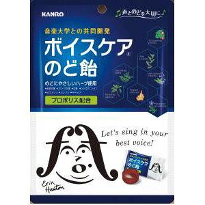 カンロ ボイスケアのど飴(個包装) 70g×6入
