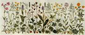 フレメ クロスステッチ刺繍キット 草原の花 輸入 Prairie flowers デンマーク 北欧 上級者 30-4654