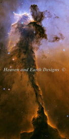 Heaven And Earth Designs クロスステッチ刺繍図案 HAED 輸入 上級者 NASA Images 立ち昇る鷹 The Eagle Has Risen 全面刺し