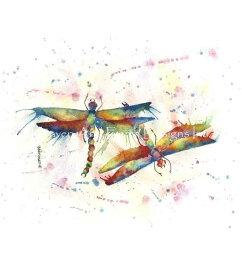 クロスステッチししゅう図案 トンボの求愛 Heaven And Earth Designs 輸入 David Bartholet 上級者 Dragonfly Courtship