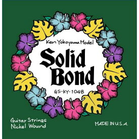 Solid Bond 《ソリッドボンド》 Ken Yokoyama Signature Guitar Strings [GS-KY-1048]