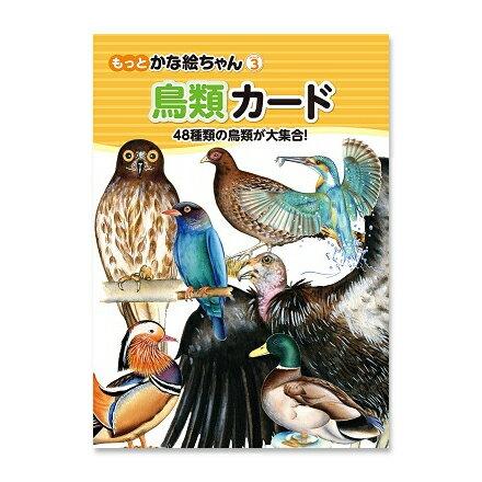 ☆七田式(しちだ)フラッシュカード教材☆ 鳥類カード☆★