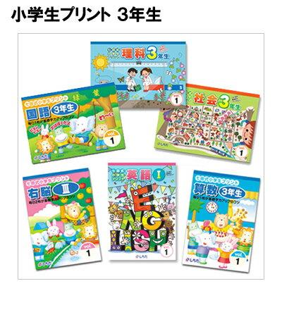 ☆送料無料☆ 七田式(しちだ)小学生プリント3年生2科目☆★