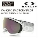 17 canopy fp a