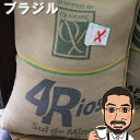 コーヒー豆 送料無料 ブラジル・マイルド200gクアトロリオス農園イエローカツアイ種...