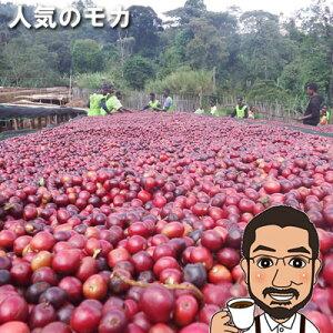 コーヒー豆 送料無料 エチオピア・モカ・イルガチェフェG1ウオッシュ600g(200g×3袋)【メール便 送料無料 コーヒー コーヒー豆 お試し コーヒー豆 おすすめ レギュラーコーヒー モカコー