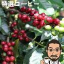 コーヒー豆 送料無料 特選コーヒー200g クリスマスブレンド【メール便 送料無料 コーヒー コーヒー豆 お試し コーヒー豆 おすすめ レギュラーコーヒー coffee コロンビアコーヒー豆】