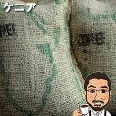 ケニア・ノルディックロースト200g【送料無料】【浅煎り】【コーヒー豆】