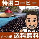 数量限定!【メール便 送料無料】ただいまの特選コーヒー600g ミャンマー・ブルーマウンテンファーム・ナチュラル【コーヒー豆】