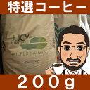 数量限定!ただいまの特選コーヒー200g ブラジル・サンタジューシー農園イエローカツアイ種【お中元ギフト】【直火焙…