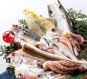 鮮魚の一夜干し7種 各1枚