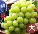晴王[シャインマスカット](7月下旬〜8月中旬出荷)【お中元ギフト】約900g(1房)