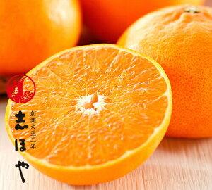 愛媛県産 せとか 高級 柑橘 お祝 内祝 お供え お返し お取り寄せ ギフト約1.5kg(約5〜7玉)詰