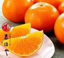 紅マドンナ(紅まどんな)2L〜3Lサイズ【お歳暮ギフト】【クリスマス】約1.5kg(5〜7玉位)