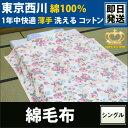 Fln0180500