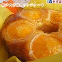 あす楽 瀬戸内芳醇オレンジケーキ 送料込 冷蔵便 食フェス クーポン ギフト 内祝い 誕生日 TV 新聞 雑誌で紹介 手作り…