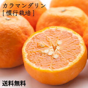 [特選]カラマンダリン慣行5kg        【送料無料】