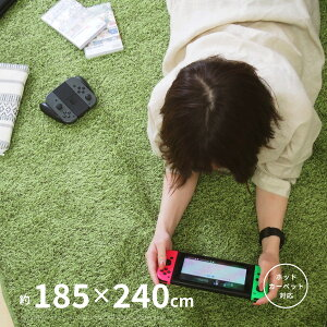 【レビュー報告でプレゼント】ふっくら贅沢な芝生ラグマット シーヴァ 約185×240cm【約3畳】 人工芝 室内用 屋内用 カーペット おすすめ ウレタン入り 子供部屋 緑 グリーン おしゃれキャン