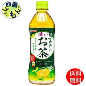 【送料無料】サンガリア すばらしい濃いお茶 (500mlペットボトル×24本)1ケース 24本