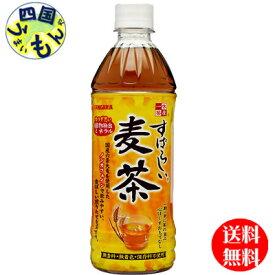【2ケース送料無料】サンガリア すばらしいお茶 麦茶 (500ml×24本)2ケース 48本