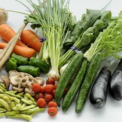 生鮮市場まるひろ旬の野菜セット【送料無料】