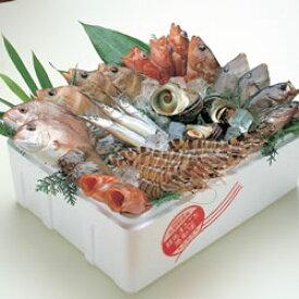 来島海峡の鮮魚詰め合わせ A