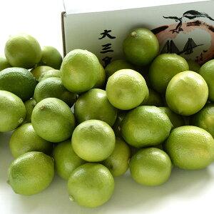 国産瀬戸内大三島産レモン(越智敬三さんのレモン)5kg (40個〜50個)