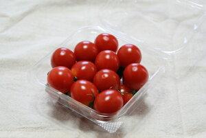ミニトマト 1パック 1袋