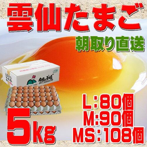 送料無料 雲仙 たまご 5kg 箱入り (L:80個 M:90個 MS:108個))究極のたまご 卵 卵かけご飯 高級卵 九州 新鮮 生卵 TKG もみじたまご 鶏卵 アレルギー 5.0kg〜9.9kg
