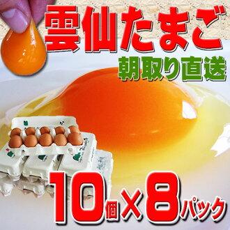 운젠 온천 계란 80 개의 화장 팩 들 (10 개 * 8 팩) 「 운젠 달걀 」은 안전 하 고 맛을 찾았다 슈퍼 신선한 계란! 저장 하는 데 도움이 친구 お裾分け 선물에 적합 한 ' 80 개입 2400 엔 [계란/계란 걸리고 밥/달걀 류/계란 규슈/계란 신선/계란] 02P07Nov15