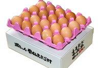 雲仙たまご20個入り6箱まで同梱できます『卵/卵かけご飯/卵高級/卵九州/卵新鮮/生卵』