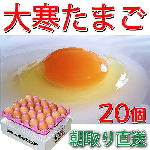 大寒たまご 20個 送料無料 縁起卵 数量限定 1年に1度の希少な大寒タマゴ