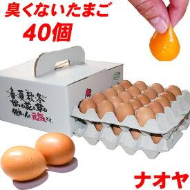 高級卵 雲仙たまご 40個入り 送料無料 産地直送 地卵 高級卵 巣ごもり 免疫アップ