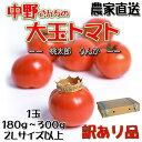 N tomato sam