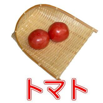 2 或 3 的番茄