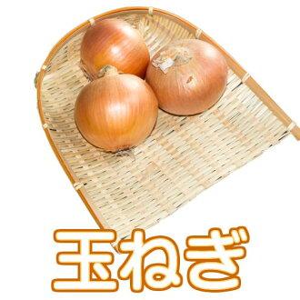 Shimabara Peninsula from onion 2016