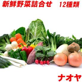 新鮮 野菜 詰め合わせ チルド便 送料無料 九州 島原発 定番野菜含む12種類セット ナオヤおまかせセット 産地直送