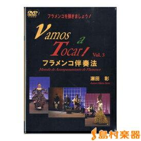 DVD フラメンコを弾きましょう!(3)VAMOS A TOCAR 2枚組 / 現代ギター社