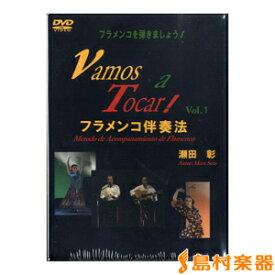 DVD フラメンコを弾きましょう!(1)VAMOS A TOCAR 2枚組 / 現代ギター社