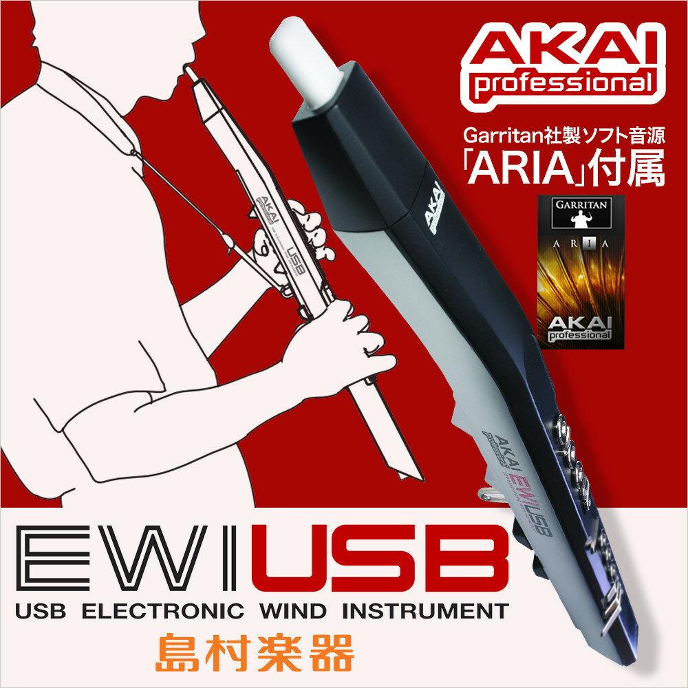 【ポイント5倍!7/20 0:00〜23:59】AKAI EWI USB ウィンドシンセサイザー USBコントローラー 【アカイ】