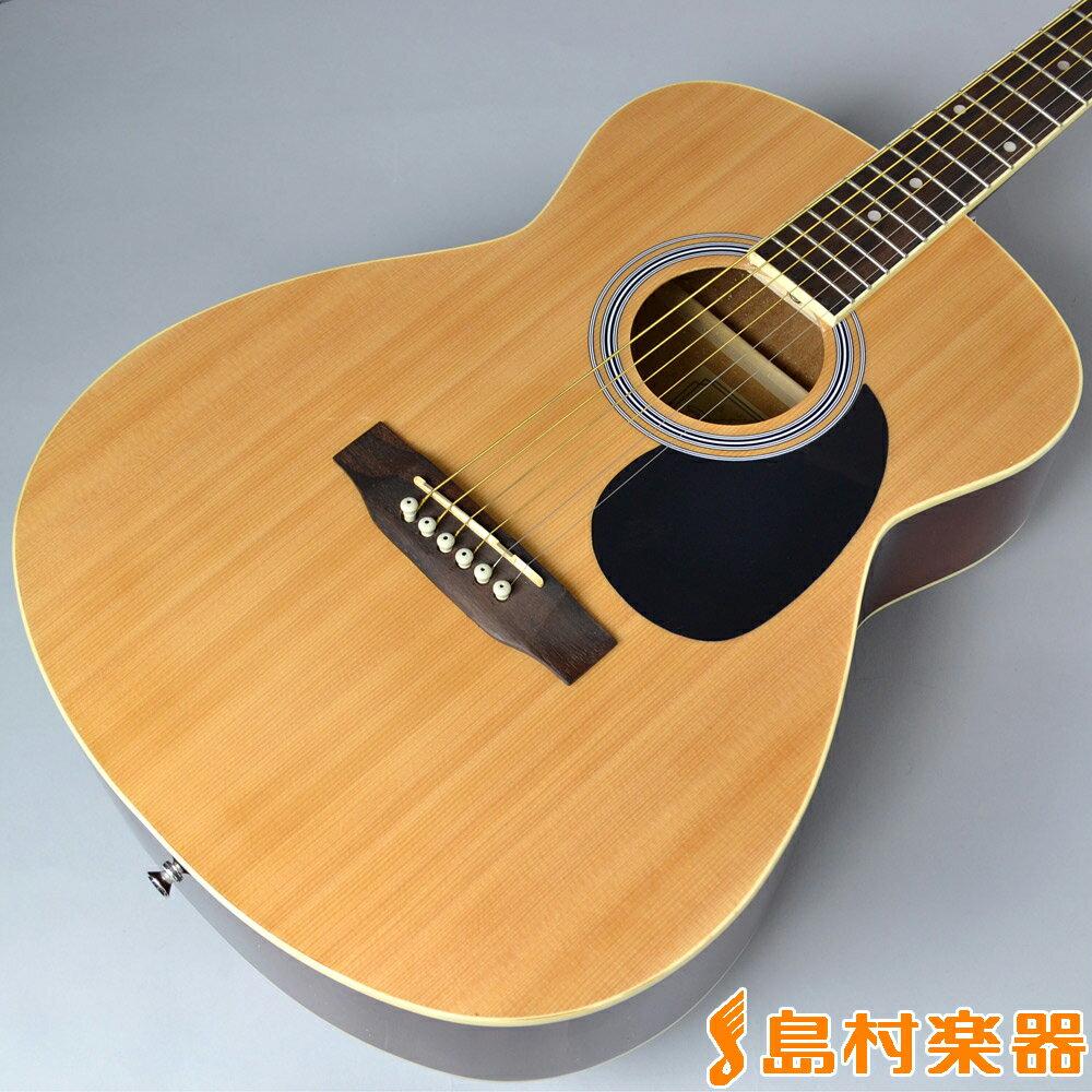 Vanguard VFG-01 NA(ナチュラル) アコースティックギター 【バンガード VFG01】