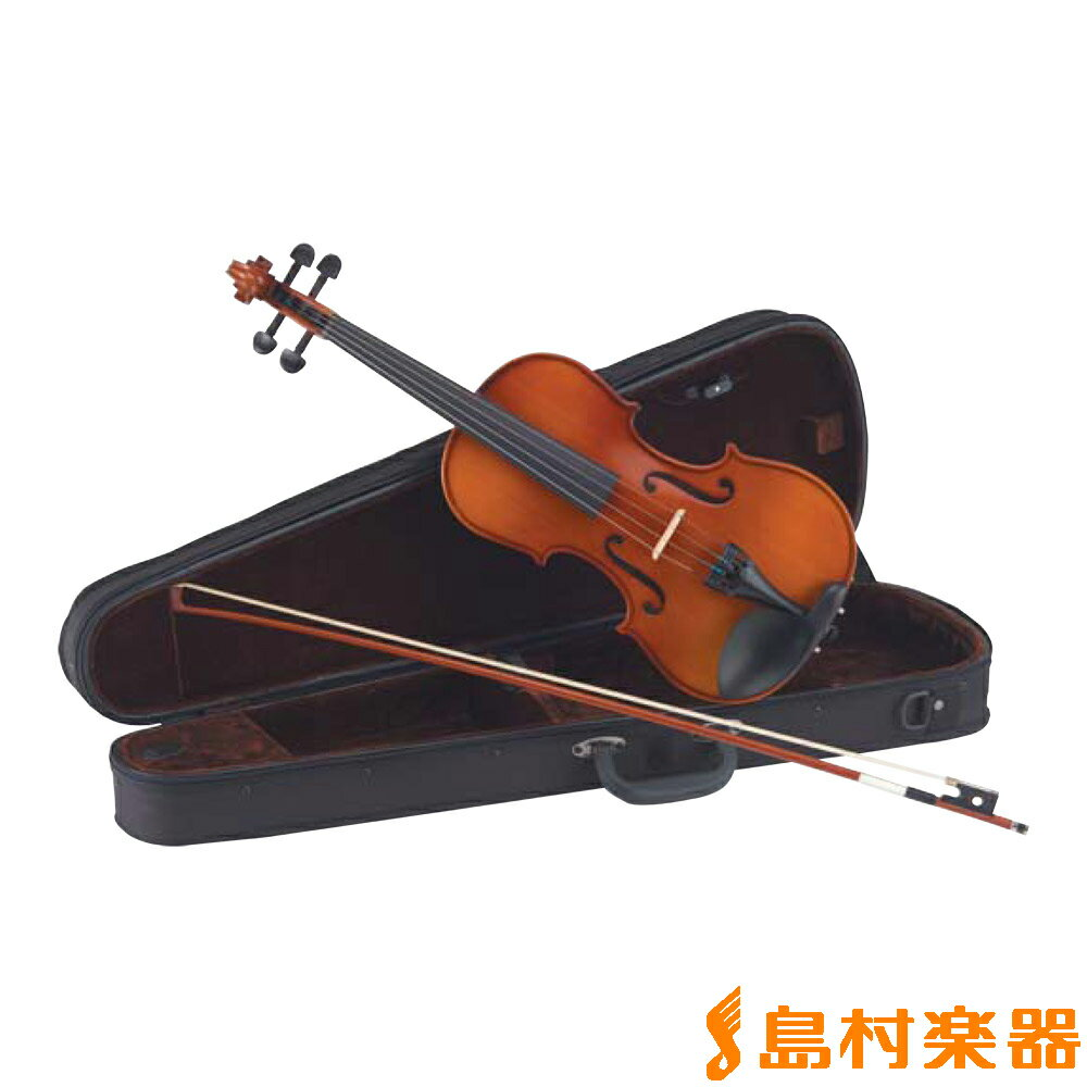 Carlo giordano VS-1 4/4サイズ バイオリンセット 【カルロ ジョルダーノ VS1 アウトフィット】