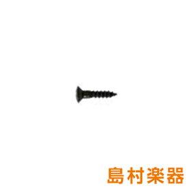 SCUD TS11BH ブラック ピックガード用ビス ミリサイズ 1 Φ2.7×L13mm 丸皿頭 【スカッド】