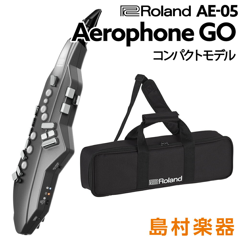 Roland Aerophone GO AE-05 ウインドシンセサイザー [Bluetooth]対応 【ローランド AE05】