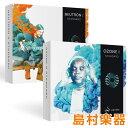 iZotope Mix & Master Bundle ( Ozone8 Standard + Neutron2 Standard ) プラグインソフト 【ダウンロード版】 【アイ…