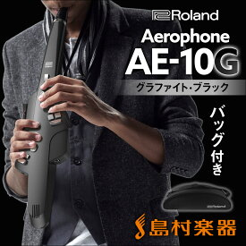 Roland Aerophone AE-10G Graphite Black (グラファイトブラック) ウインドシンセサイザー 【ローランド AE10G】