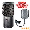 Aston Microphones Origin コンデンサーマイク 【アストンマイクロフォン】【中田ヤスタカ愛用モデル】