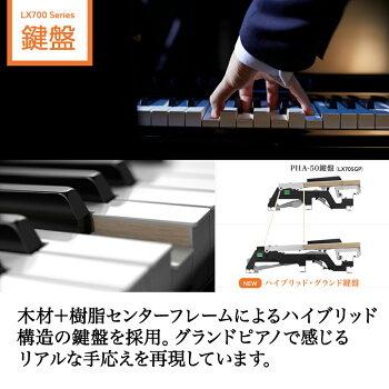 https://image.rakuten.co.jp/shimamuragakki/cabinet/set/03c/lx700gp_5.jpg