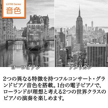 https://image.rakuten.co.jp/shimamuragakki/cabinet/set/03c/lx700gp_6.jpg