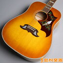 Gibson DOVE QUILT MAPLE アコースティックギター(エレアコ) ダブ 【ギブソン】【未展示品】【無金利キャンペーン実施中!8/31まで】